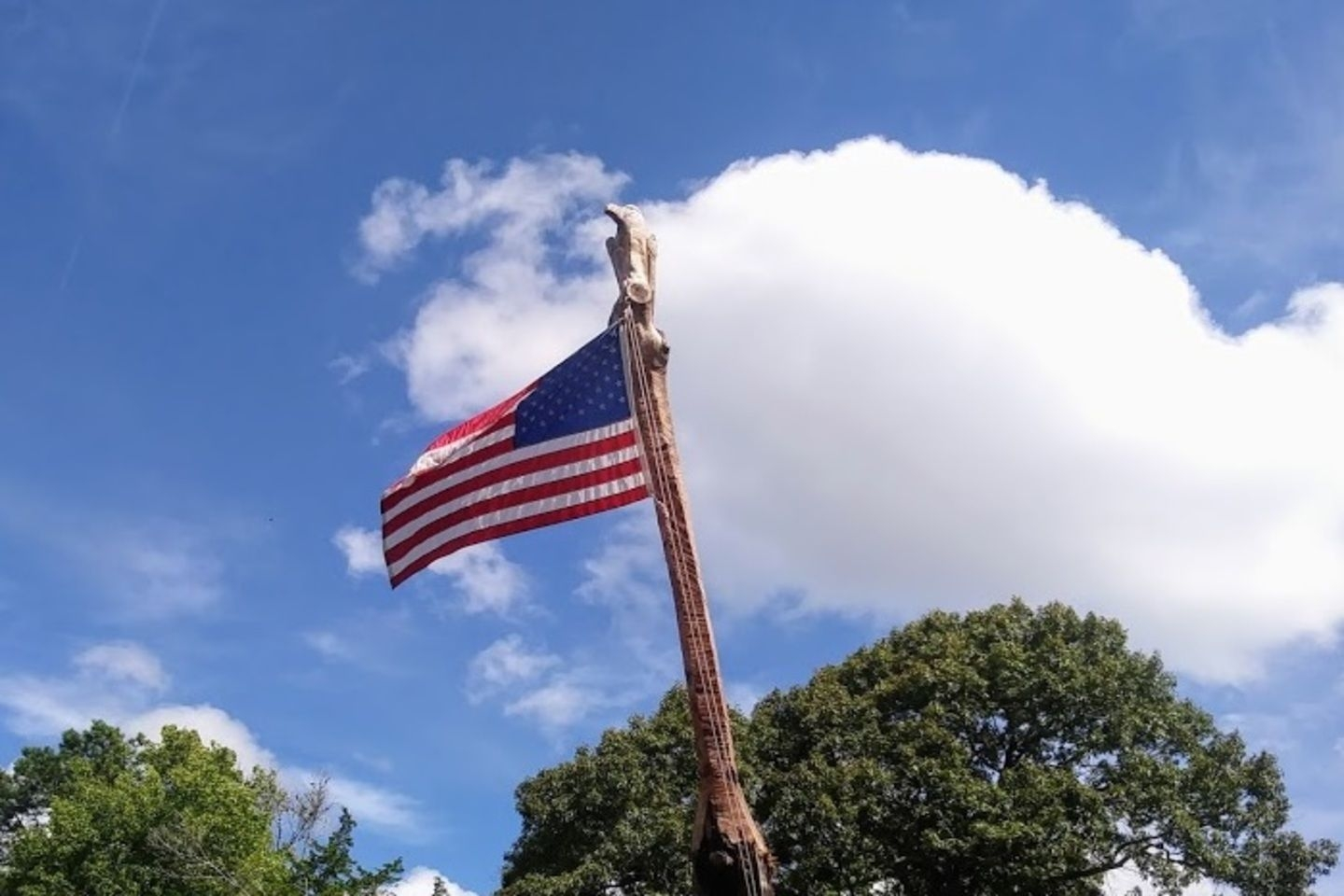 Member Jerry Blackwell submitted this picture of Old Glory on a custom-carved pole.